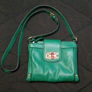 Green and gold purse